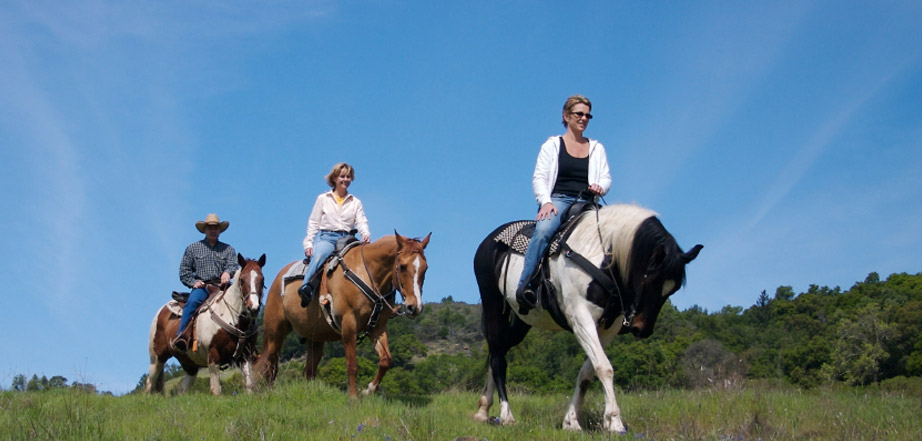 Aspen Winds on Fall Rivers offers information on Estes Park, Colorado horseback riding.