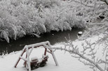 Snow covered swing next to Fall River
