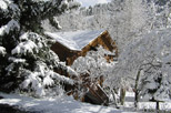 Snow covered cabin at Aspen Winds